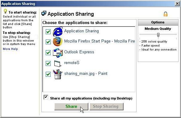 The Application Sharing dialog box lists the applications you can share.